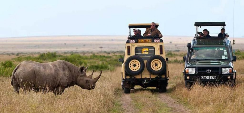 5-things-you-should-know-about-masai-mara-safaris